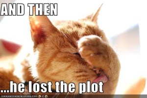 SILLY.LOST-THE-PLOT
