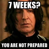 SILLY.SNAPE-PREPARED